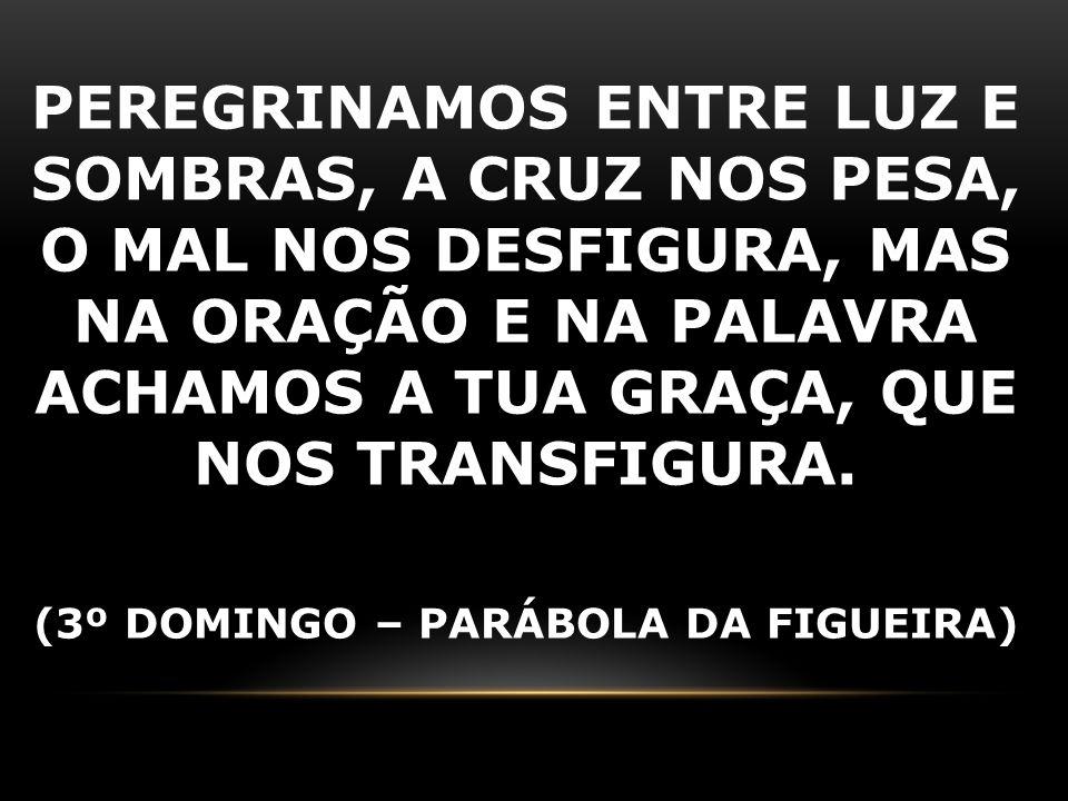 (3º DOMINGO – PARÁBOLA DA FIGUEIRA)