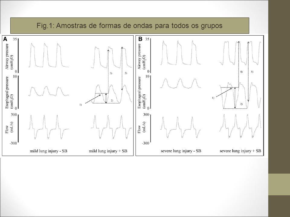 Fig.1: Amostras de formas de ondas para todos os grupos