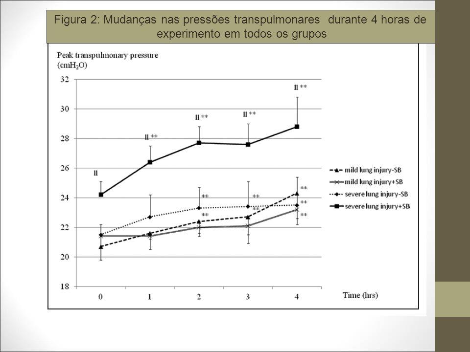 Figura 2: Mudanças nas pressões transpulmonares durante 4 horas de
