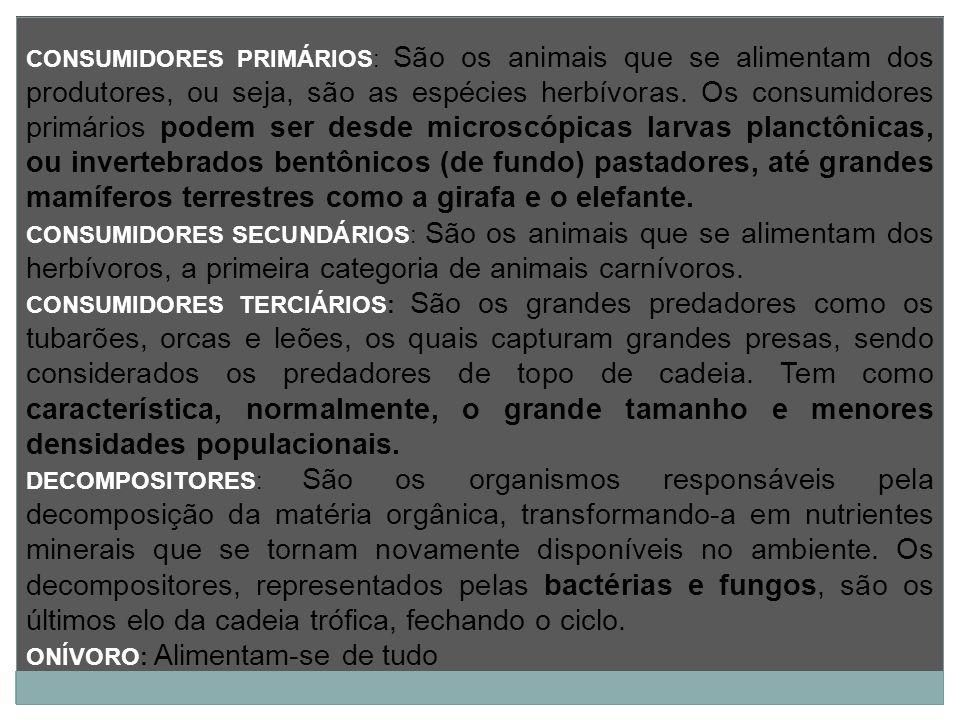 CONSUMIDORES PRIMÁRIOS: São os animais que se alimentam dos produtores, ou seja, são as espécies herbívoras. Os consumidores primários podem ser desde microscópicas larvas planctônicas, ou invertebrados bentônicos (de fundo) pastadores, até grandes mamíferos terrestres como a girafa e o elefante.
