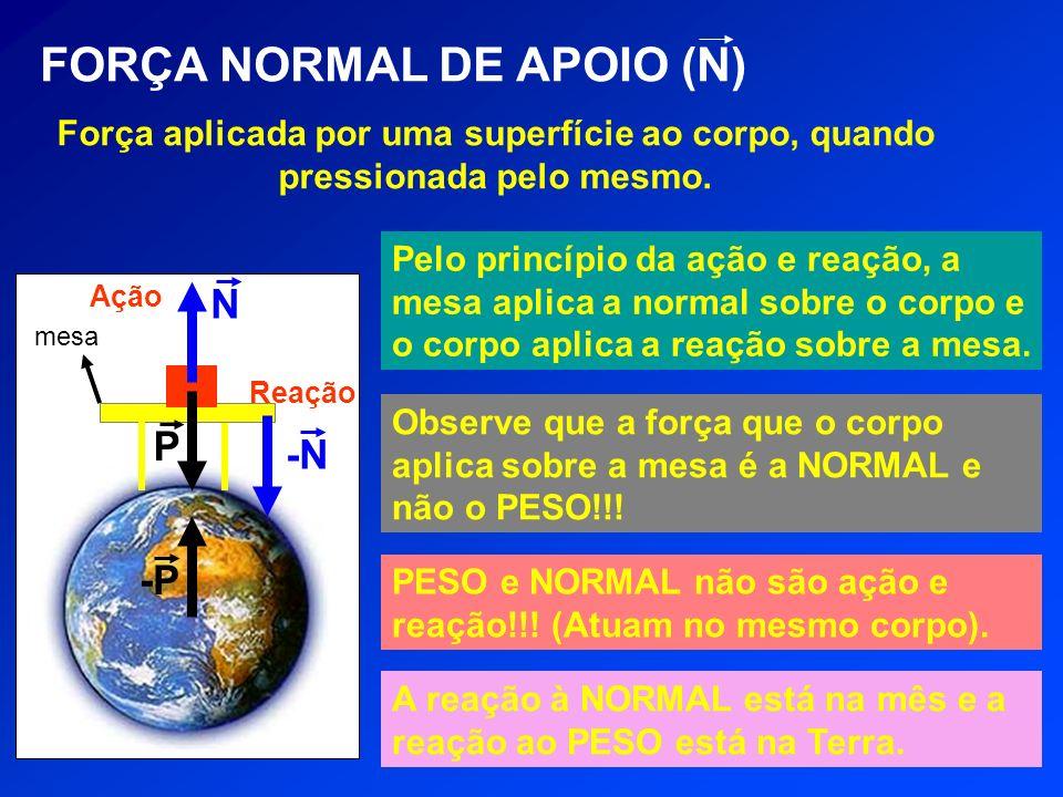 FORÇA NORMAL DE APOIO (N)