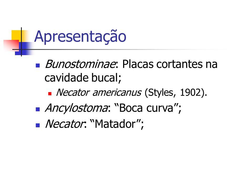 Apresentação Bunostominae: Placas cortantes na cavidade bucal;