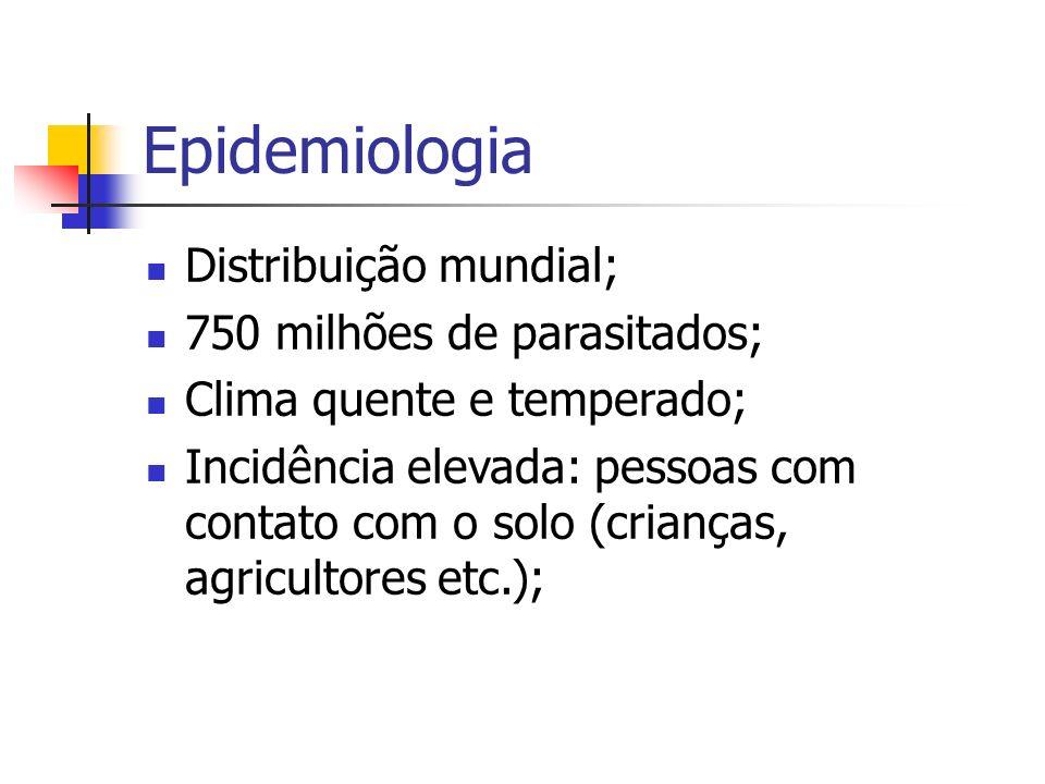 Epidemiologia Distribuição mundial; 750 milhões de parasitados;