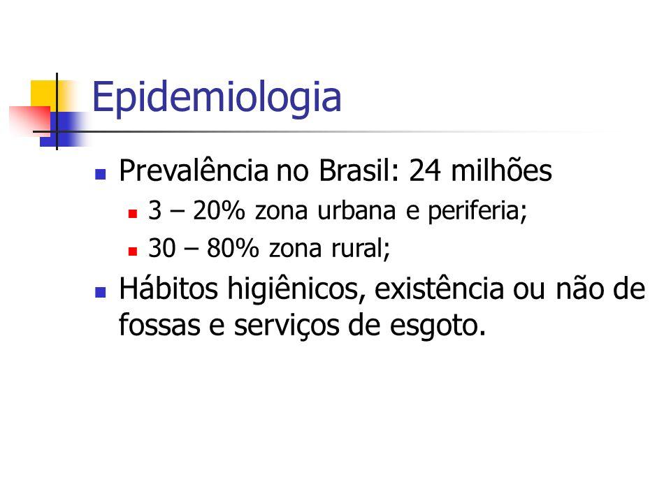 Epidemiologia Prevalência no Brasil: 24 milhões