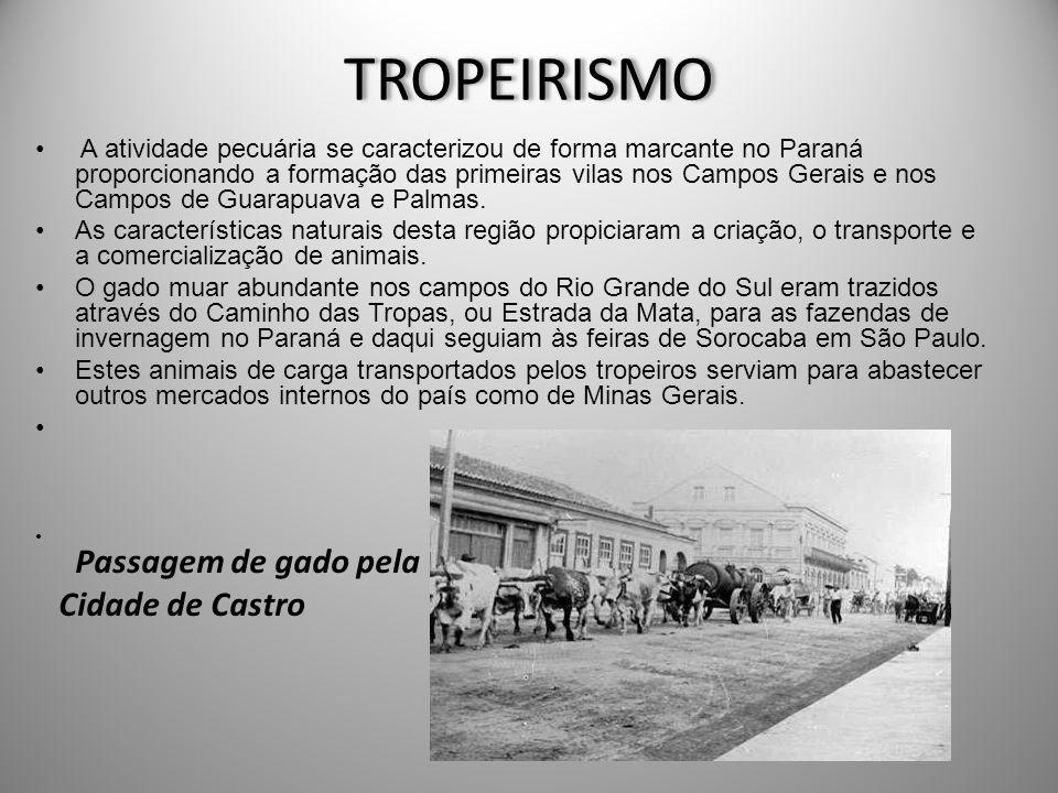 TROPEIRISMO Cidade de Castro