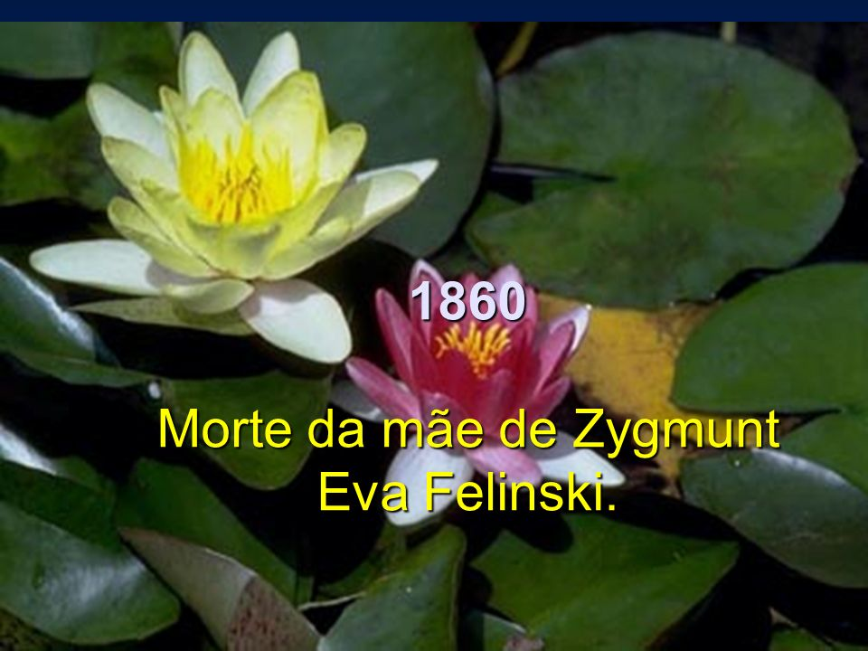 1860 Morte da mãe de Zygmunt Eva Felinski.