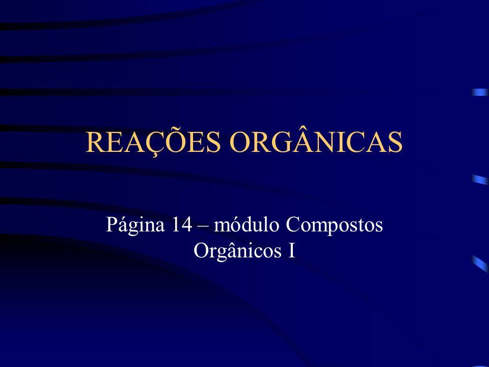 Página 14 – módulo Compostos Orgânicos I