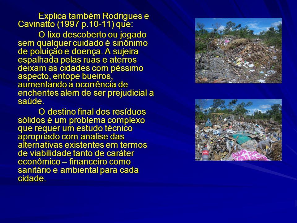 Explica também Rodrigues e Cavinatto (1997 p.10-11) que: