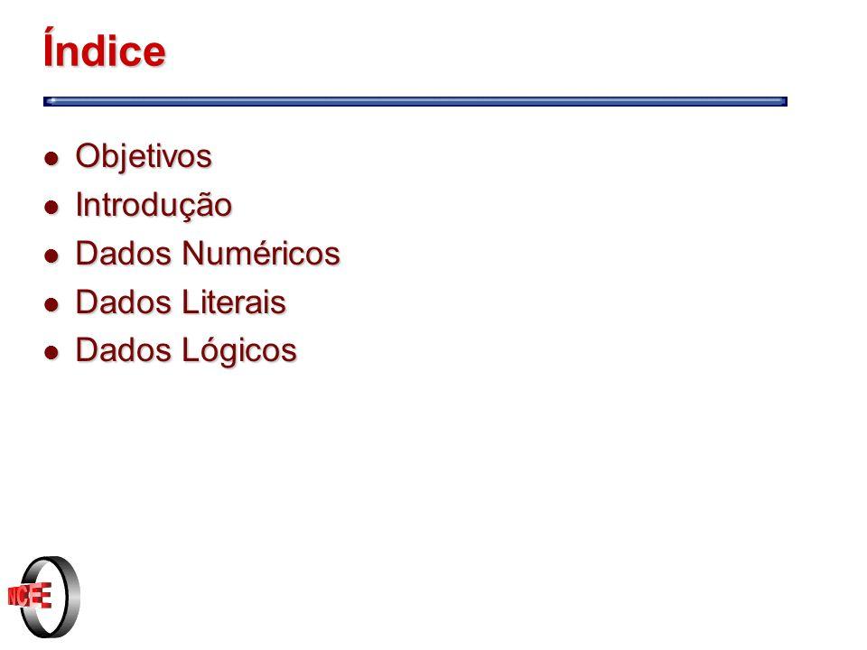 Índice Objetivos Introdução Dados Numéricos Dados Literais