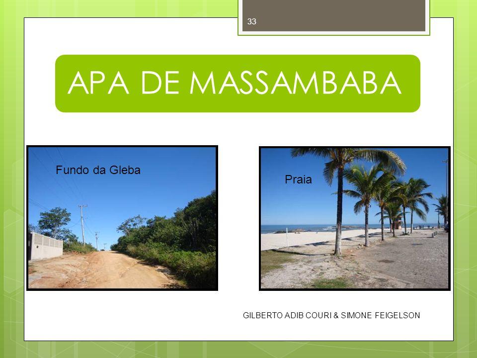 APA DE MASSAMBABA Fundo da Gleba Praia