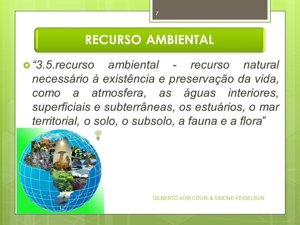 RECURSO AMBIENTAL