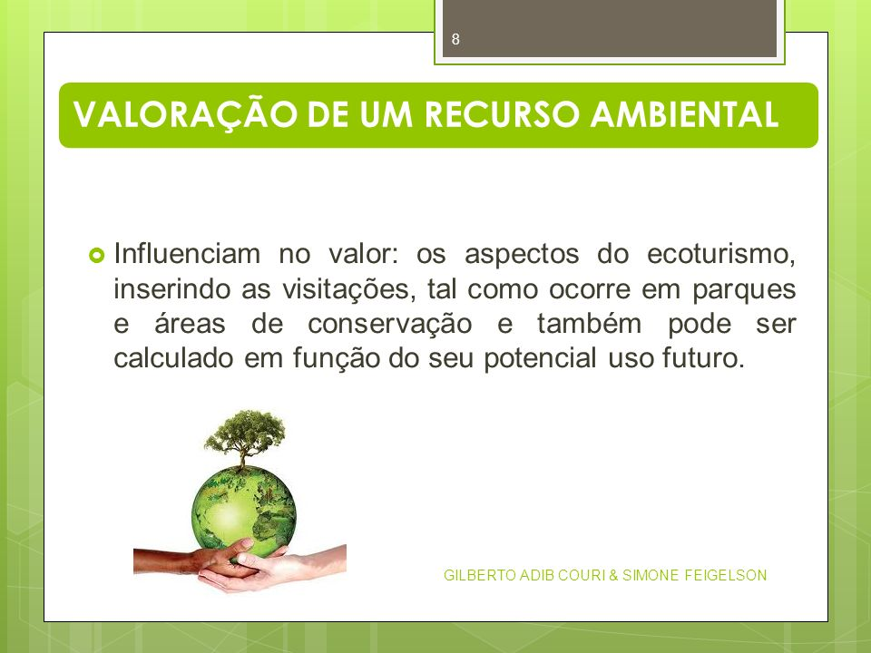VALORAÇÃO DE UM RECURSO AMBIENTAL