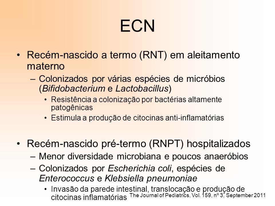 ECN Recém-nascido a termo (RNT) em aleitamento materno