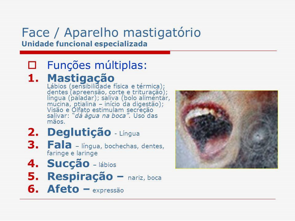 Face / Aparelho mastigatório Unidade funcional especializada