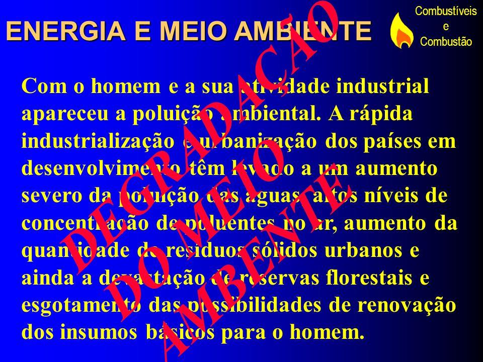 DEGRADAÇÃO DO MEIO AMBENTE