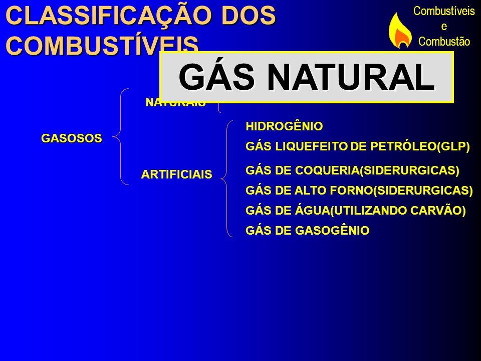 GÁS NATURAL CLASSIFICAÇÃO DOS COMBUSTÍVEIS GÁS NATURAL NATURAIS