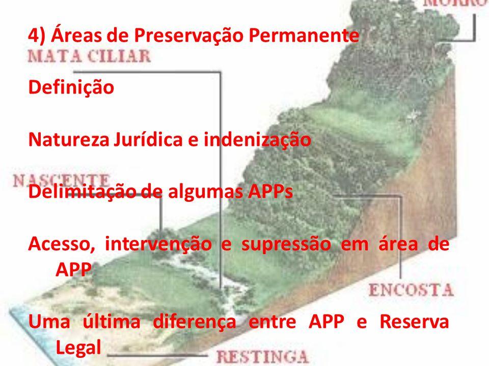 4) Áreas de Preservação Permanente