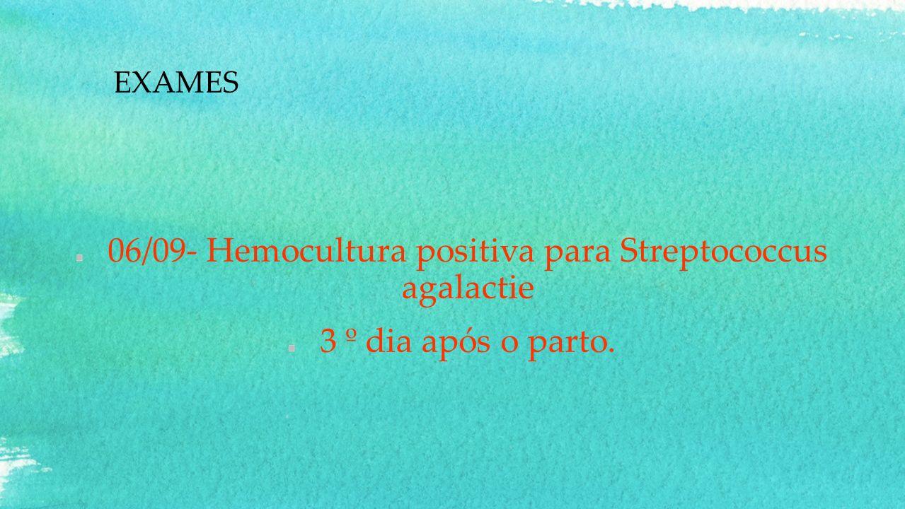 06/09- Hemocultura positiva para Streptococcus agalactie