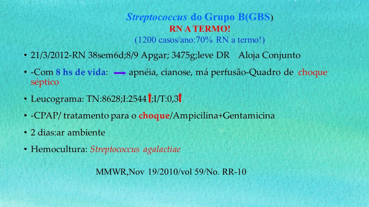 Streptococcus do Grupo B(GBS)