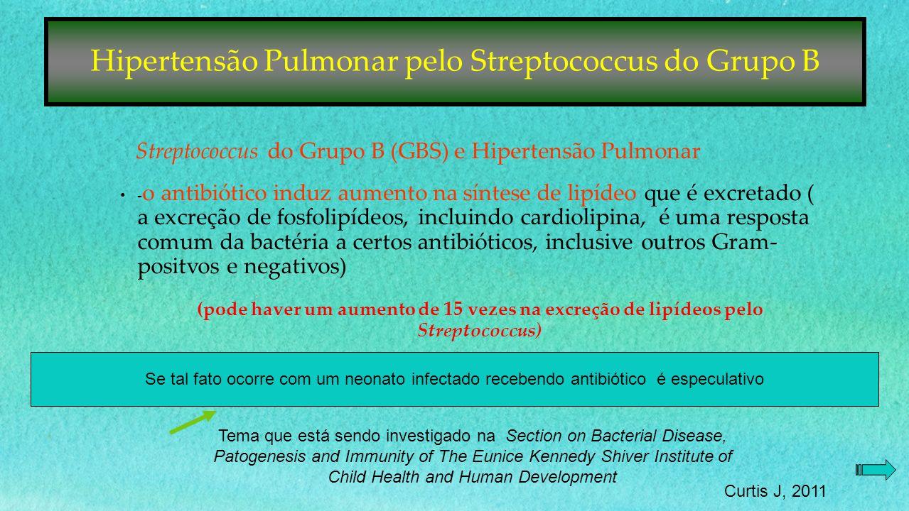 Hipertensão Pulmonar pelo Streptococcus do Grupo B