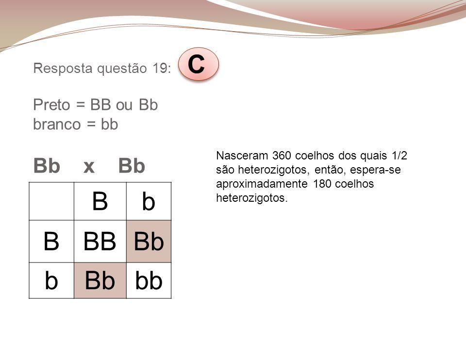 Resposta questão 19: C Preto = BB ou Bb branco = bb Bb x Bb
