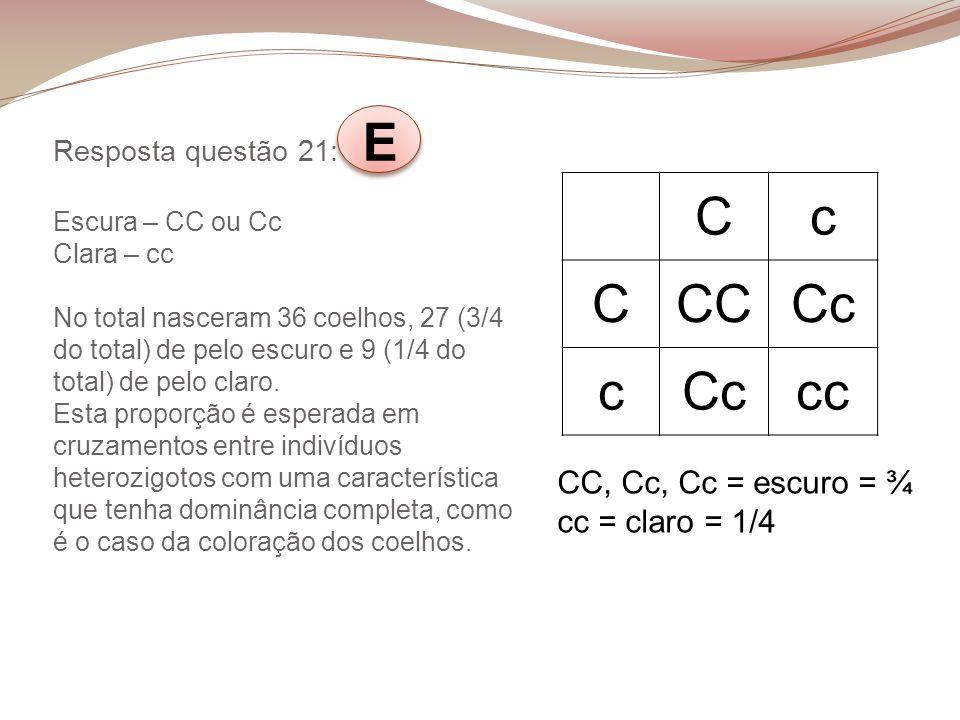 C c CC Cc cc CC, Cc, Cc = escuro = ¾ cc = claro = 1/4