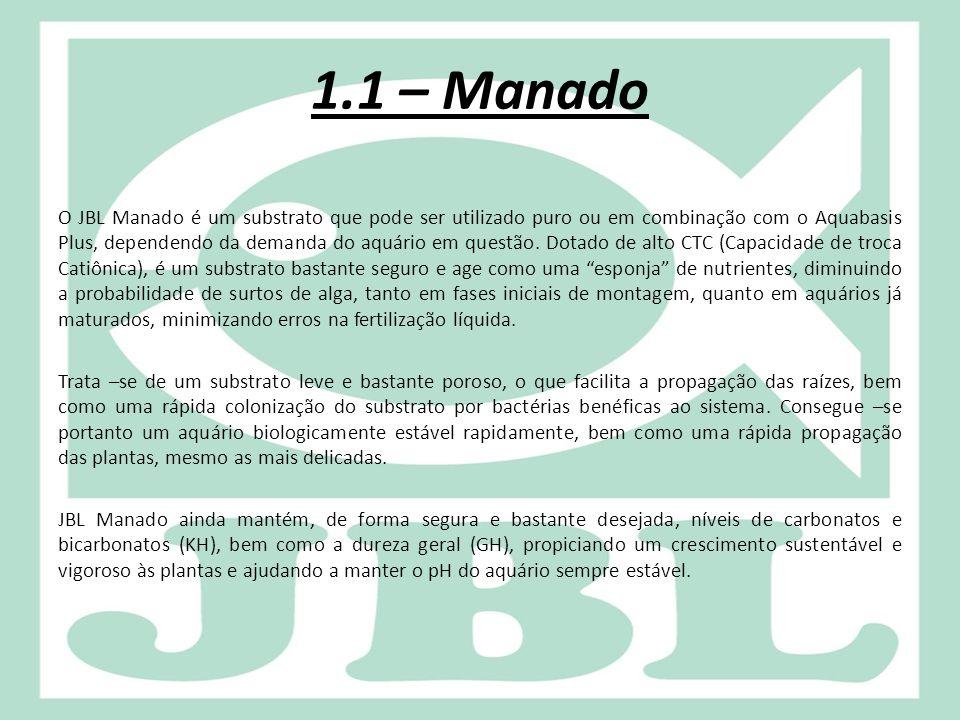 1.1 – Manado