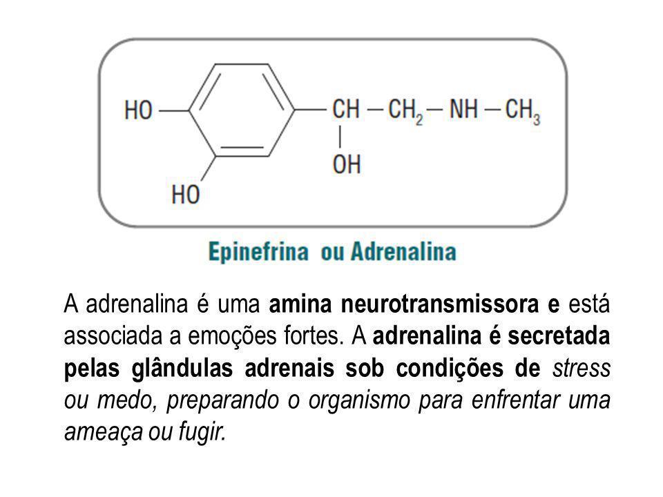 A adrenalina é uma amina neurotransmissora e está associada a emoções fortes.