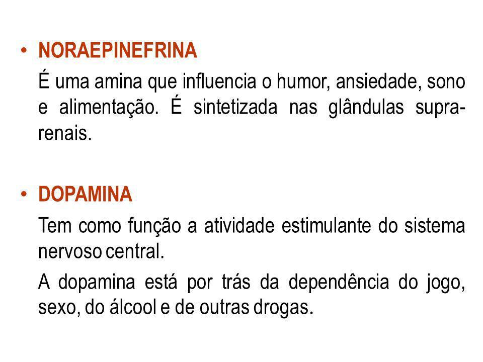 NORAEPINEFRINA É uma amina que influencia o humor, ansiedade, sono e alimentação. É sintetizada nas glândulas supra-renais.
