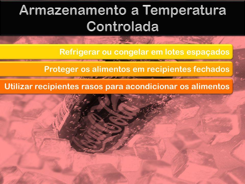 Armazenamento a Temperatura Controlada
