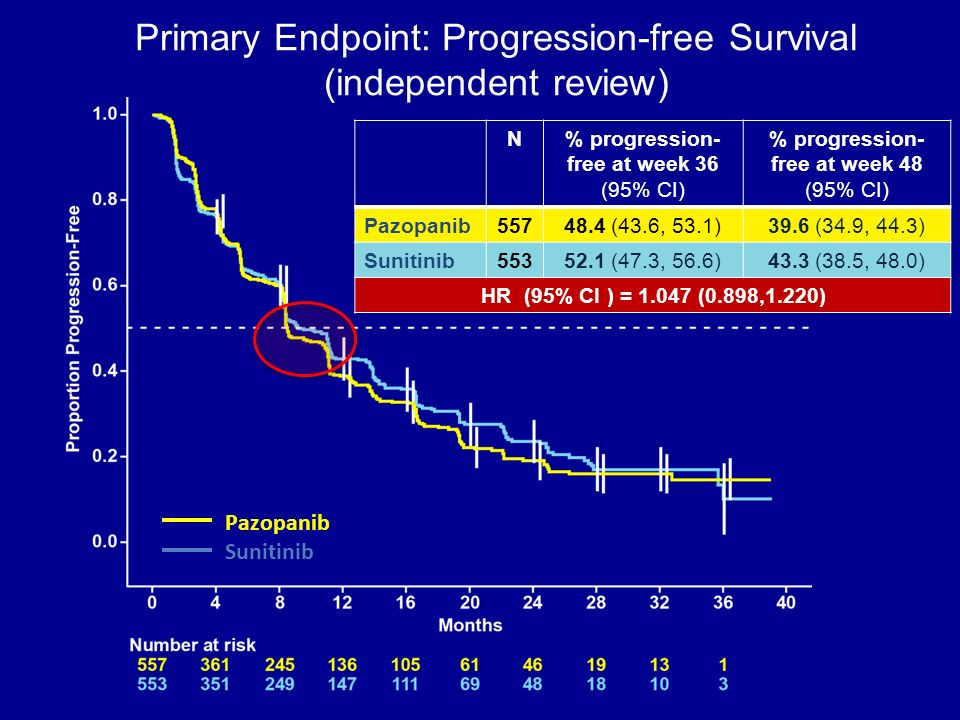 Primary Endpoint: Progression-free Survival (independent review)