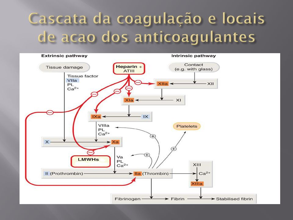 Cascata da coagulação e locais de acao dos anticoagulantes