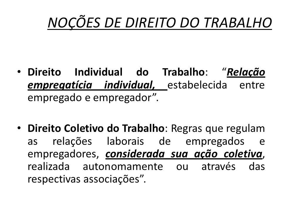 NOÇÕES DE DIREITO DO TRABALHO