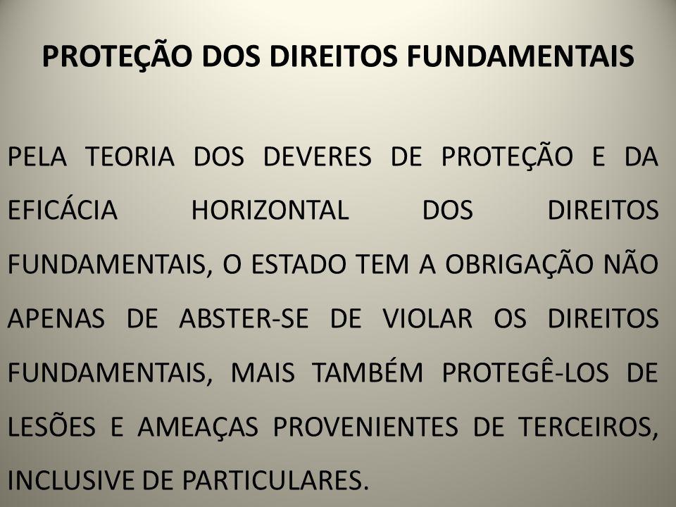 PROTEÇÃO DOS DIREITOS FUNDAMENTAIS