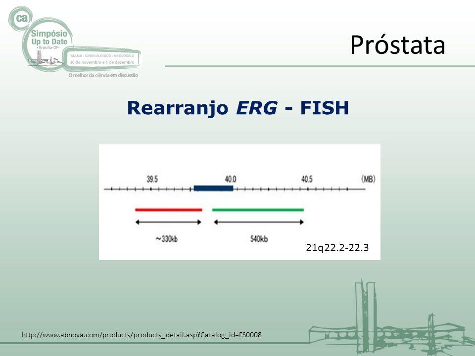Próstata Rearranjo ERG - FISH 21q22.2-22.3