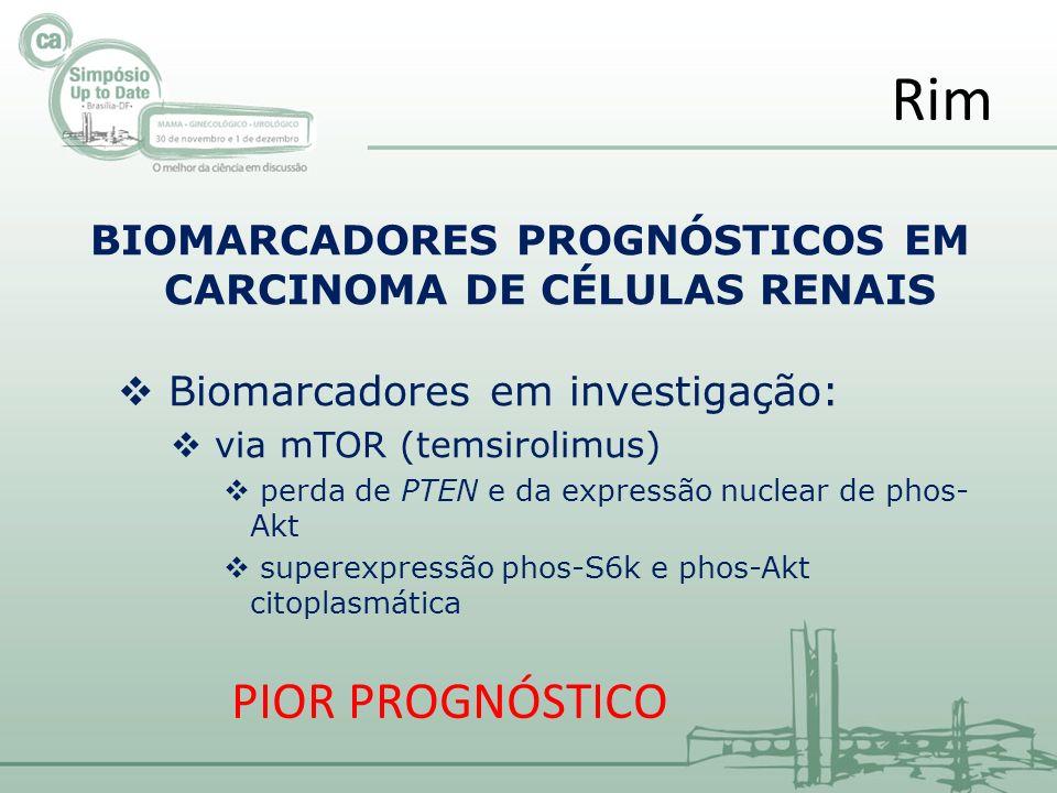 BIOMARCADORES PROGNÓSTICOS EM CARCINOMA DE CÉLULAS RENAIS