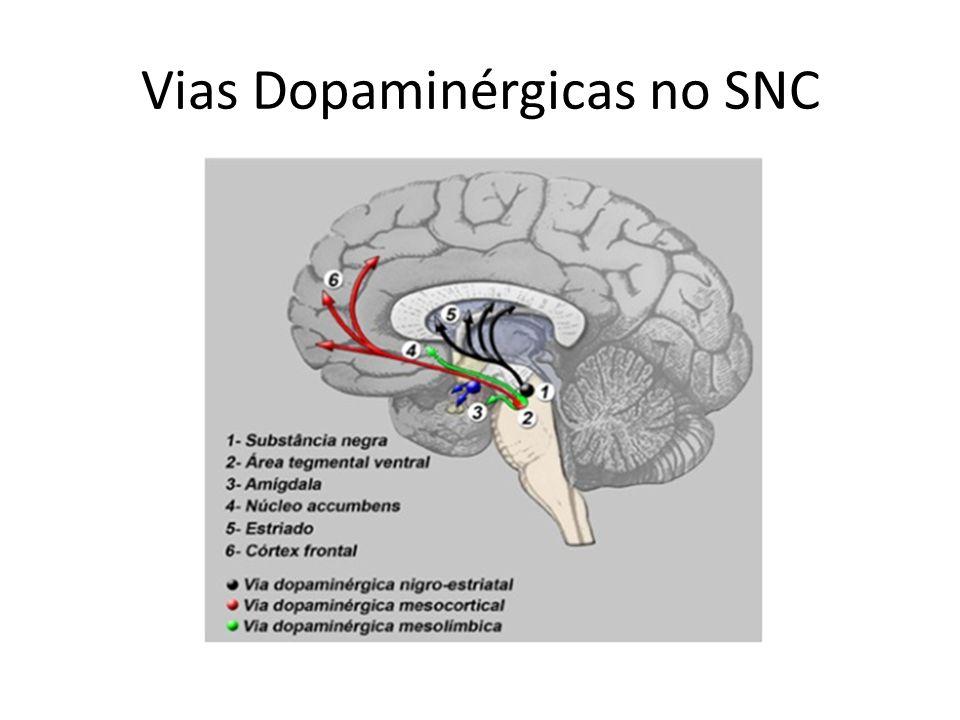 Vias Dopaminérgicas no SNC