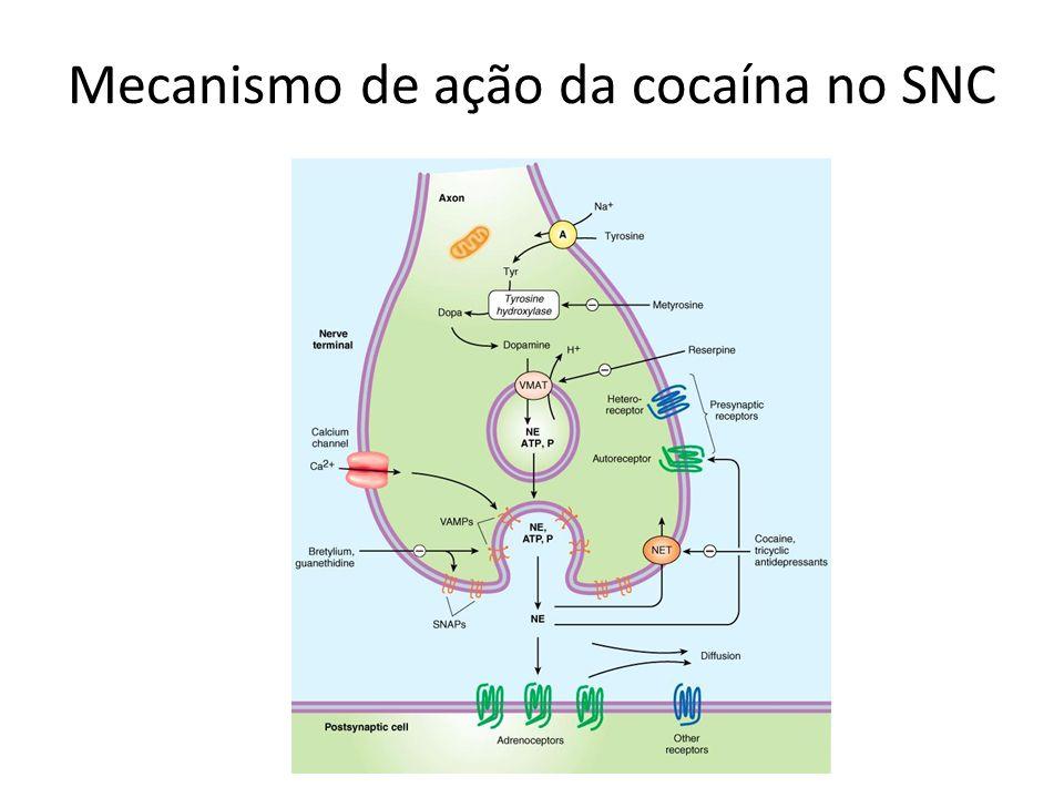 Mecanismo de ação da cocaína no SNC