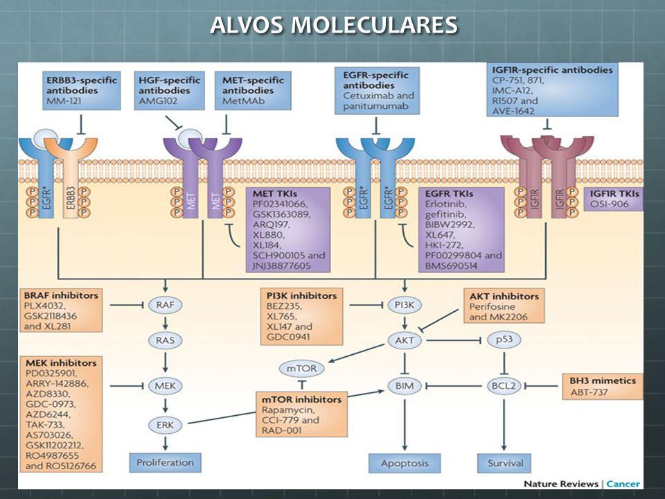 ALVOS MOLECULARES