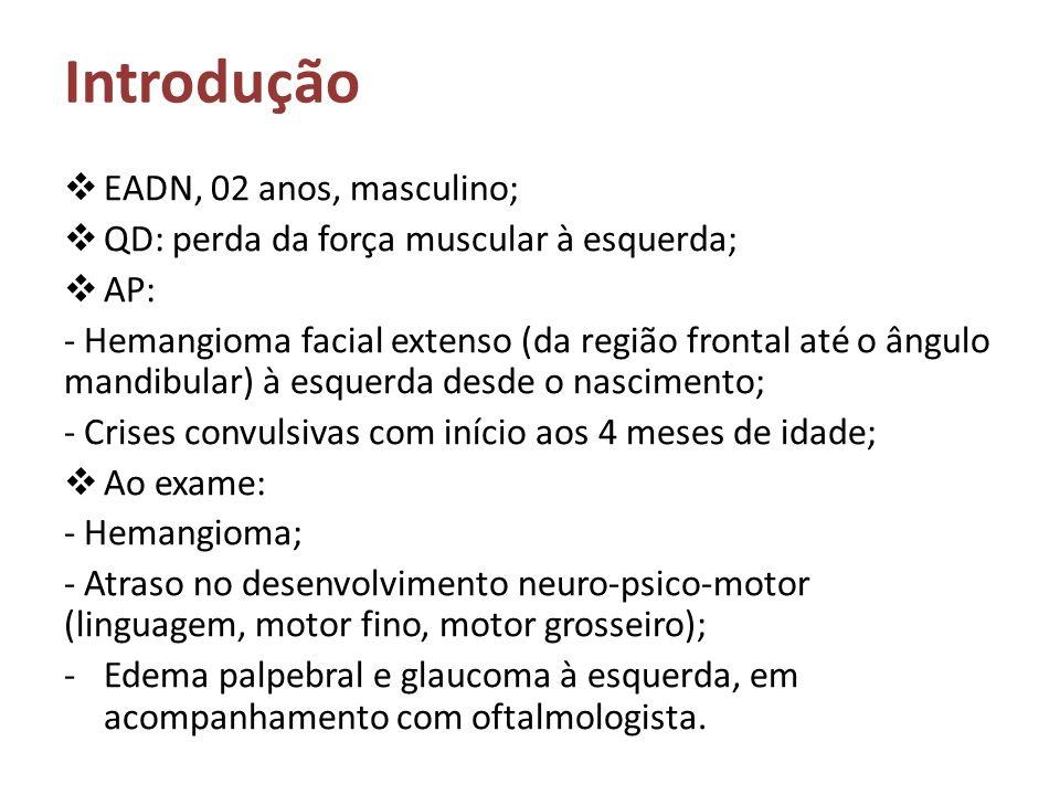 Introdução EADN, 02 anos, masculino;