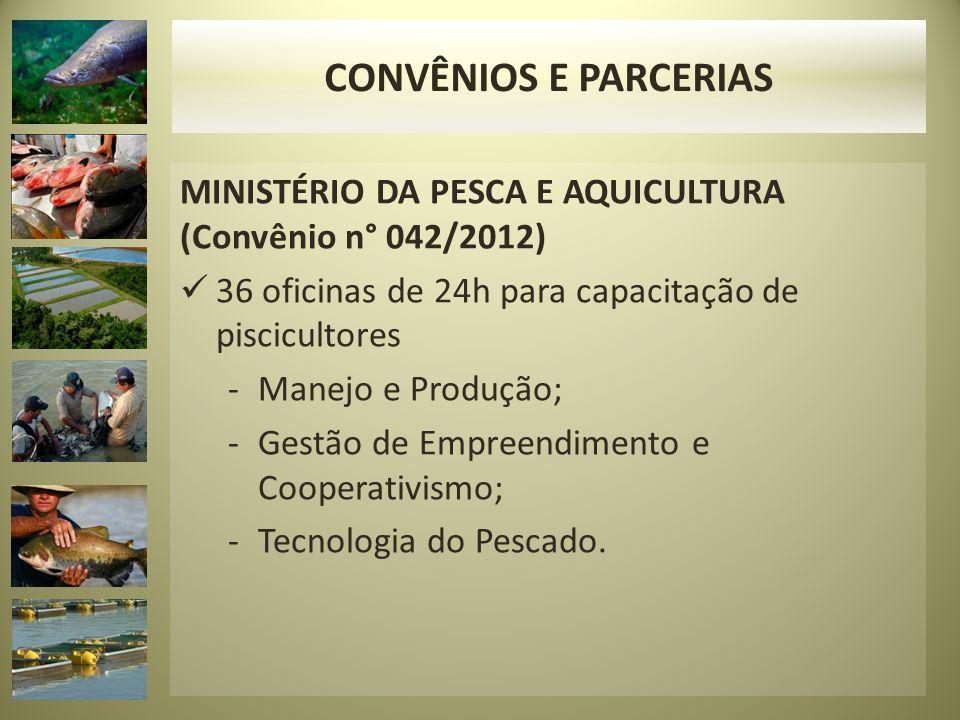 CONVÊNIOS E PARCERIAS MINISTÉRIO DA PESCA E AQUICULTURA (Convênio n° 042/2012) 36 oficinas de 24h para capacitação de piscicultores.