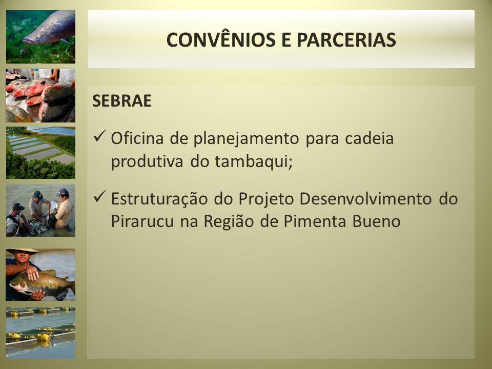 CONVÊNIOS E PARCERIAS SEBRAE