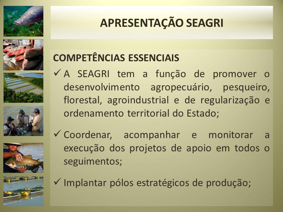 APRESENTAÇÃO SEAGRI COMPETÊNCIAS ESSENCIAIS