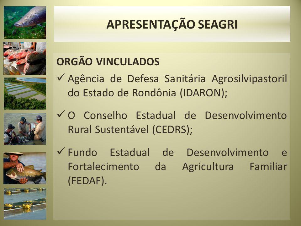 APRESENTAÇÃO SEAGRI ORGÃO VINCULADOS
