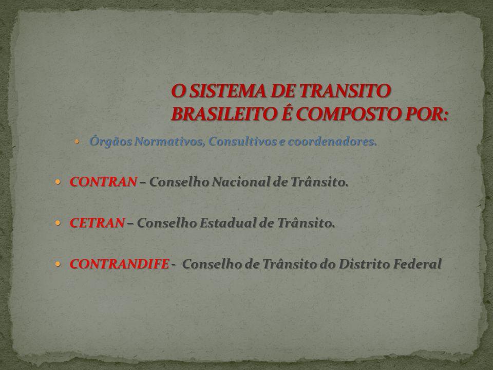 O SISTEMA DE TRANSITO BRASILEITO É COMPOSTO POR: