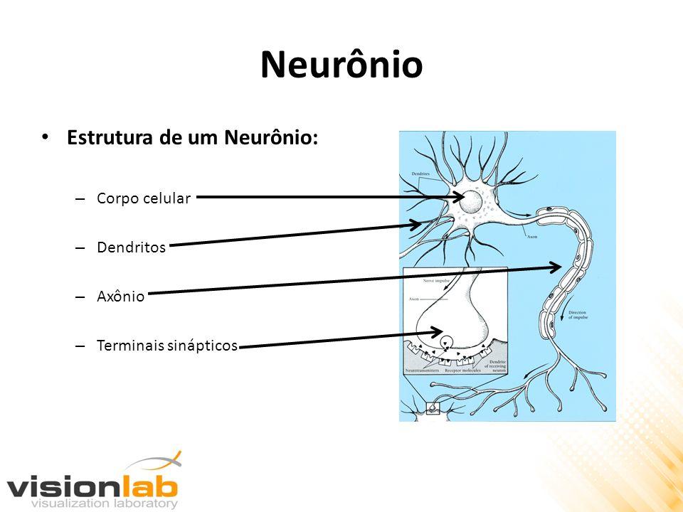 Neurônio Estrutura de um Neurônio: Corpo celular Dendritos Axônio
