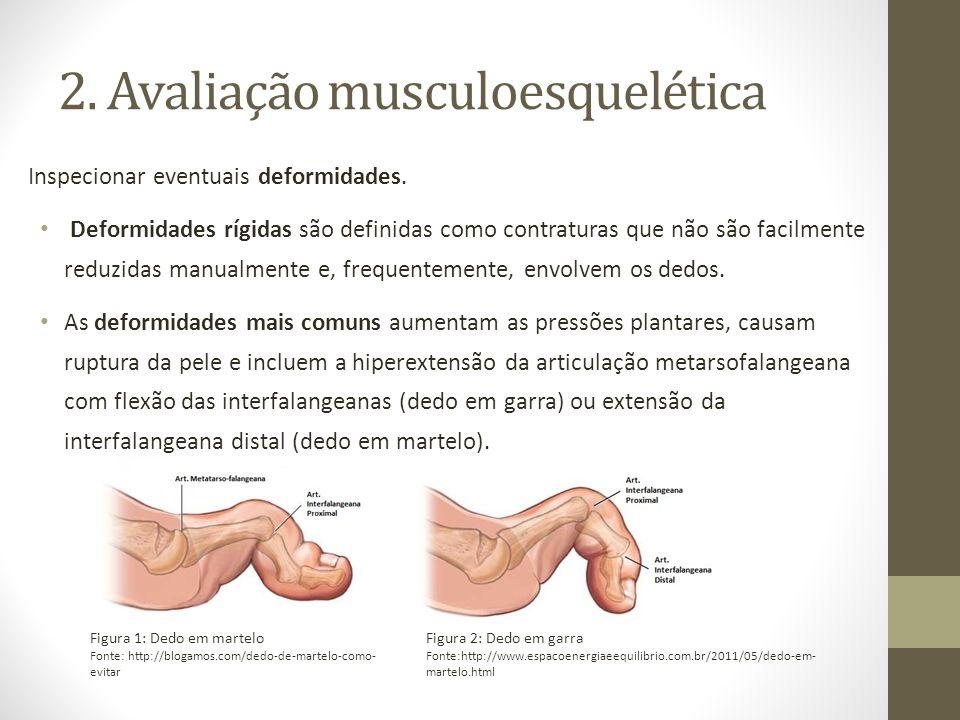2. Avaliação musculoesquelética