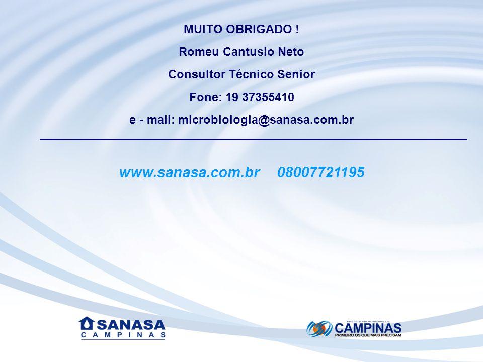 Consultor Técnico Senior