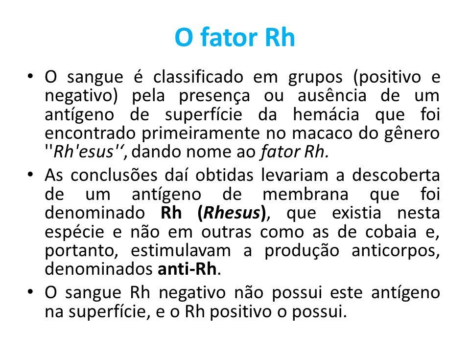 O fator Rh