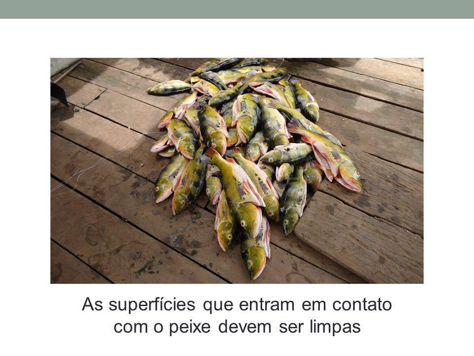 As superfícies que entram em contato com o peixe devem ser limpas